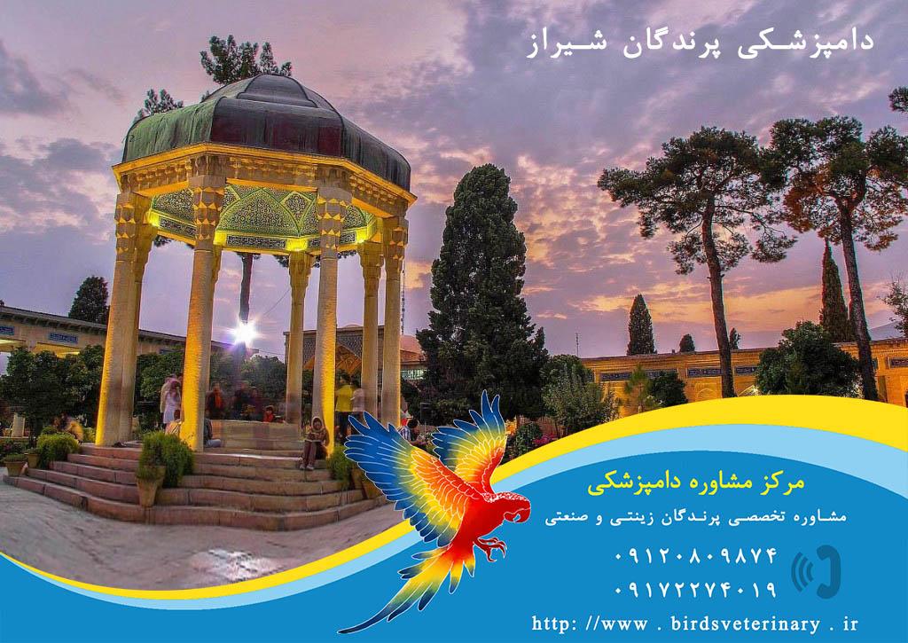 دامپزشکی پرندگان شیراز